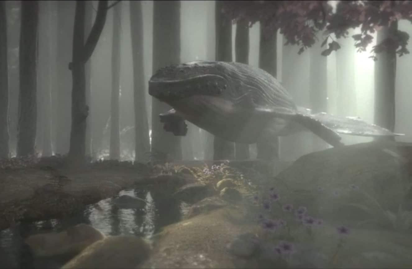 Una ballena en el bosque