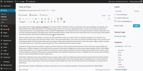 barra-editor-wordpress-4-500x249