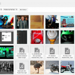 cuadricula-libreria-multimedia-wordpress-4.0-150x150